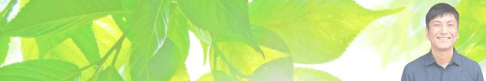harikyu-concept-reason